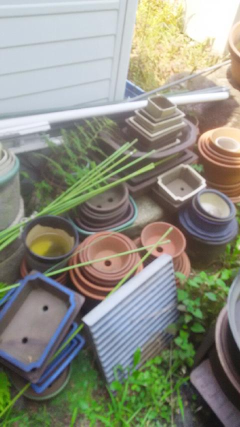 植木鉢の処分
